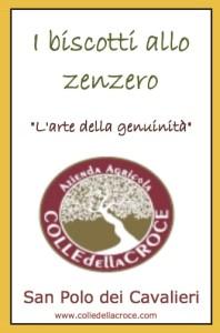 Biscotti allo zenzero 240g_042015ok (1) copy 2-min