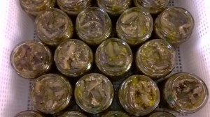 melanzane agrumi