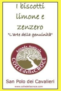 Biscotti limone e zenzero 240g_092015 nobarcode copy-min